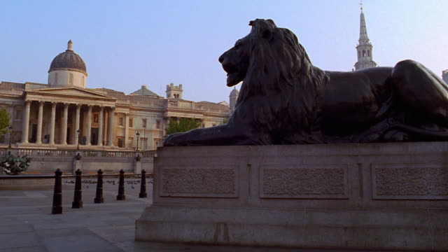 tilt up tilt down lion statue at base of nelson's column / trafalgar square, london, england - nelson's column stock videos and b-roll footage
