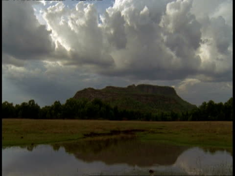 wa tilt up to mountain and cloudy sky, bandhavgarh national park, india - national icon stock videos & royalty-free footage