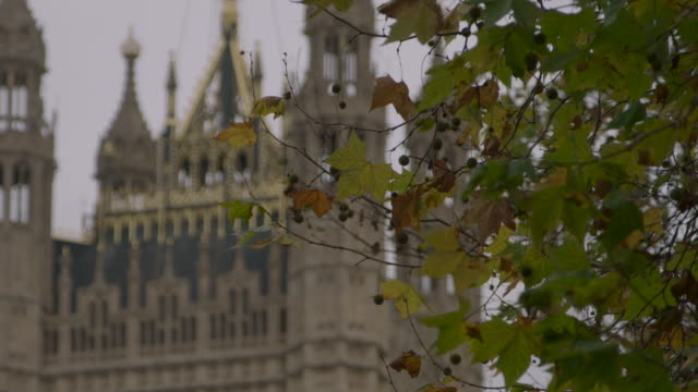 tilt up union jack, westminster, london - parliament building stock-videos und b-roll-filmmaterial