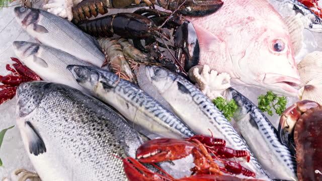 4k uhdチルトアップ:豪華な新鮮なシーフード、ロブスターサーモンサバキヤエビタコムール貝、ホタテ、凍った煙と氷の背景に様々な。氷と小売市場のコンセプトに新鮮なフロクセンシーフー - 獲った魚点の映像素材/bロール