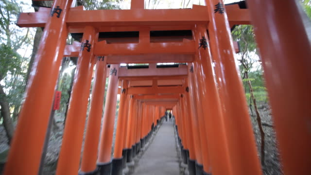 tilt up, walking through fushimi inari shrine in kyoto - shrine stock videos & royalty-free footage