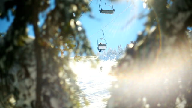 tilt up : winter scene. sunbeams hitting the lens through snowy pine branches while ski lift passes at the background - ski slope stock videos & royalty-free footage