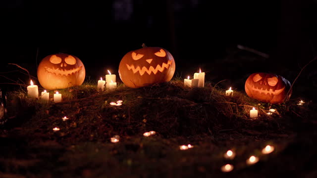 Tilt up zoom in of three scary jack-o-lantern pumpkins and burning candles in night forest. Traditional holiday symbols. Creepy Halloween celebration. Mysterious background with copy space for text