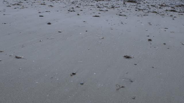 チルト アップ: 朝アイルランド海北アイルランド