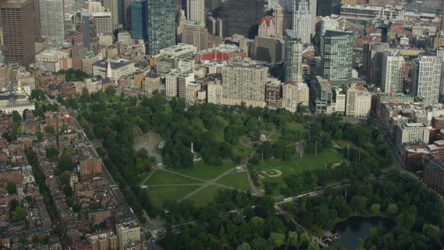 tilt-down shot of the boston common in downtown - massachusetts stock videos & royalty-free footage