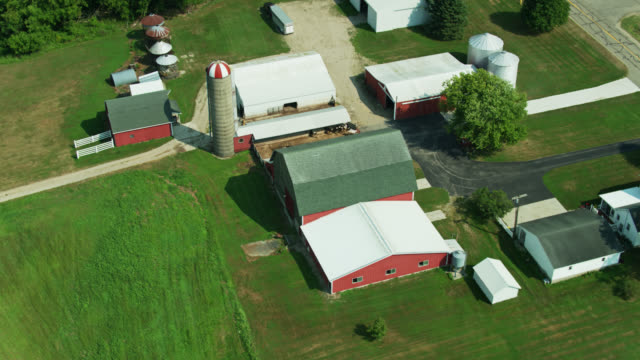 tilting drone shot of farm and rural landscape in michigan - livestock stock videos & royalty-free footage