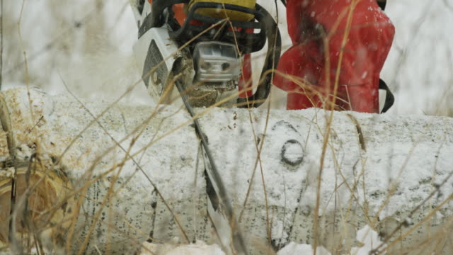 tilting up shot of a caucasian man in his thirties with a beard cutting a wooden aspen log with a chainsaw on a snowy winter day - cappotto invernale video stock e b–roll