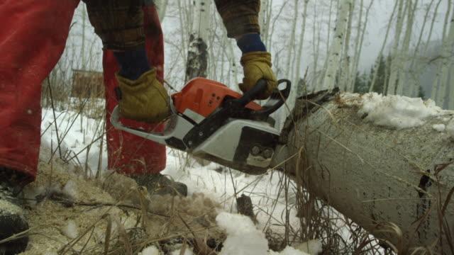 vídeos de stock, filmes e b-roll de inclinação para cima/baixo tiro de um homem caucasiano em seus trinta anos, com uma barba que cortar um tronco de aspen de madeira com uma serra elétrica em um dia de inverno a neve nas montanhas - tronco termo anatômico