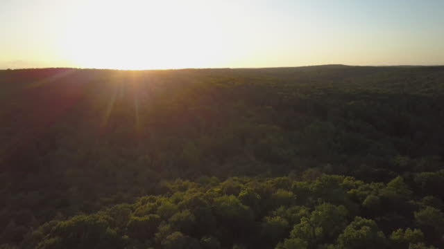 tilt-up from hilly forest to sunset, wide shot - north america stock-videos und b-roll-filmmaterial