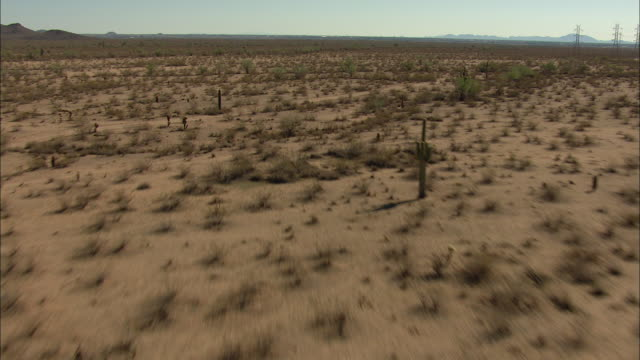 tilt-up shot of an arid landscape in arizona - shrubland stock videos & royalty-free footage