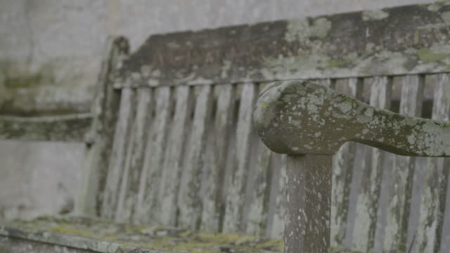 tilt-up shot of an old bench in the graveyard of the church of st mary in troston - moss stock videos & royalty-free footage
