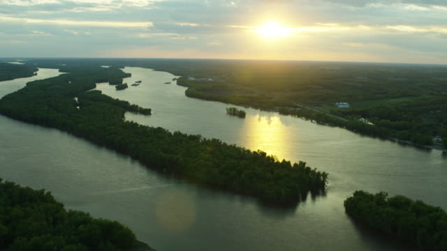 tilt-up shot of buffalo seen from over andalusia during sunset - river mississippi stock videos & royalty-free footage