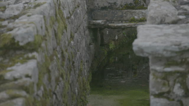 tilt-up shot of the aqueduct in a military bath house at the vindolanda roman fort - aquatic plant stock videos & royalty-free footage
