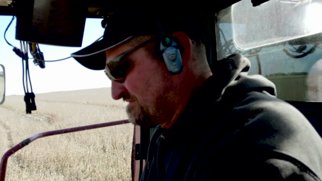 tim bardole uses a combine to harvest the soybeans in the field at the bardole son's ltd farm on october 14 2019 in rippey iowa the 2020 iowa... - soybean stock videos and b-roll footage