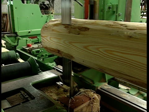 ms timber being cut in sawmill - lumberyard stock videos and b-roll footage