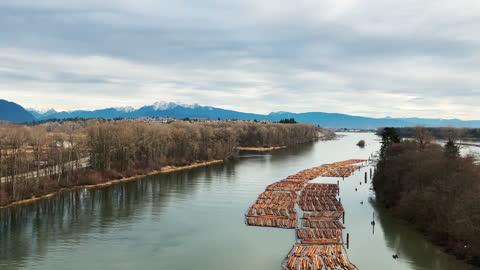 timber logs flowing in water - log stock videos & royalty-free footage