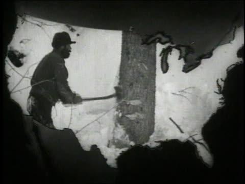 stockvideo's en b-roll-footage met 1940 ws timbering in america / united states  - bijl