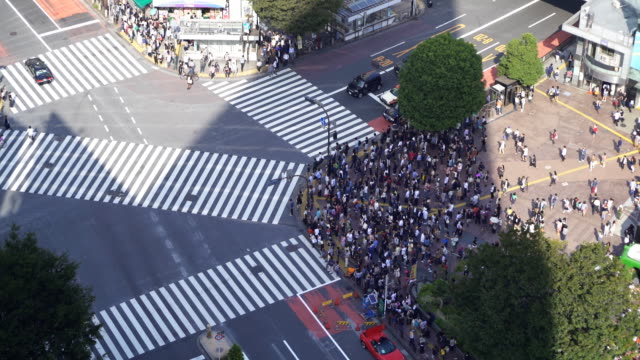 Time Lapse Aerial view of Shibuya Crossing in Tokyo, Japan