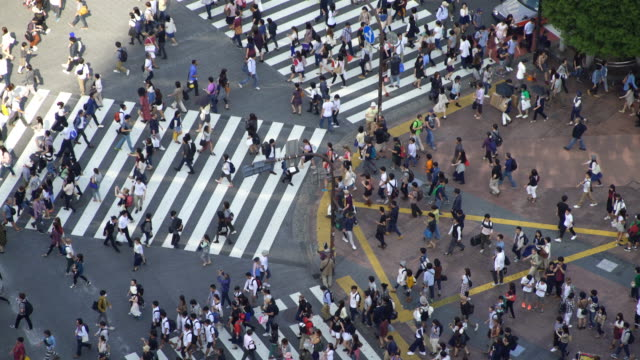 vídeos de stock e filmes b-roll de time lapse aerial view of shibuya crossing in tokyo, japan - classificados