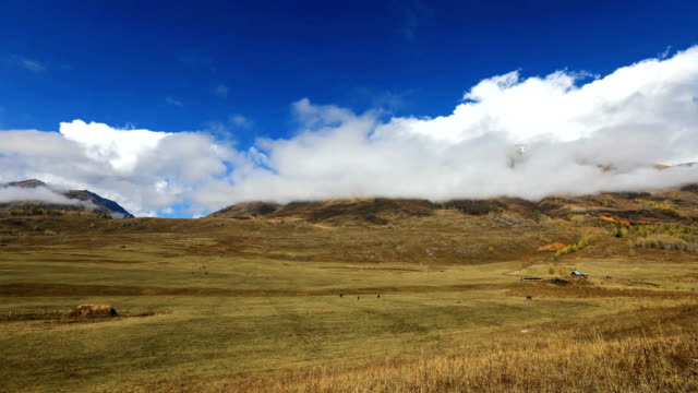 time lapse autumn scenery in sinkiang - plateau stock videos and b-roll footage
