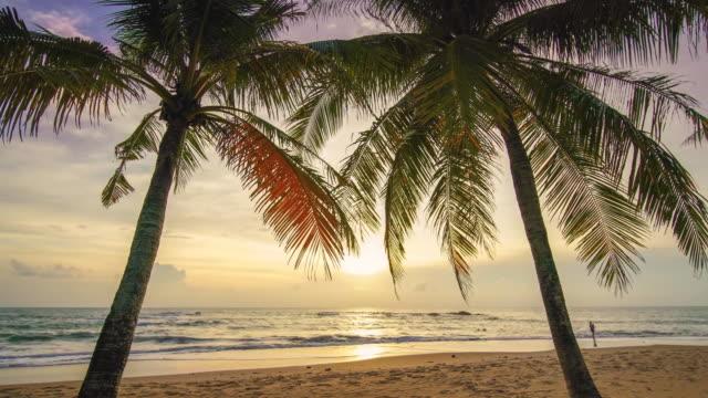 zeitraffer strand sonnenuntergang naturkonzept - tropical climate stock-videos und b-roll-filmmaterial