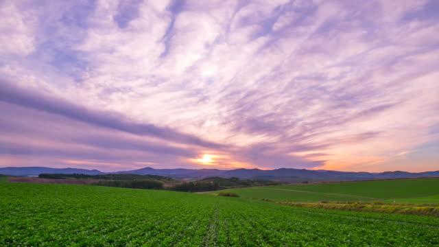 hd time lapse : biei hill landscape sunset,biei, hokkaido, japan - hokkaido stock videos & royalty-free footage