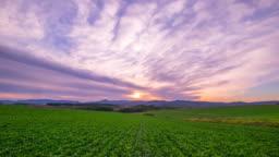 HD Time lapse : Biei Hill Landscape sunset,biei, hokkaido, japan