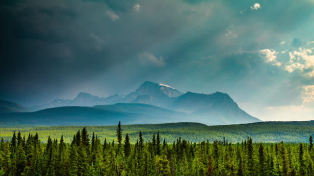 time lapse: canadian wilderness - wilderness stock videos & royalty-free footage