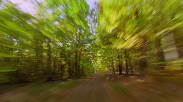 blur time lapse car point of view driving through country roads in autumn / taunus mountains, wiesbaden, germany - wiesbaden stock-videos und b-roll-filmmaterial