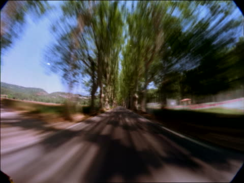 vídeos de stock, filmes e b-roll de time lapse car point of view on tree-lined country road / aix-en-provence, south of france - aix en provence