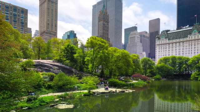 time lapse zo of central park and manhattan skyline - colore verde video stock e b–roll