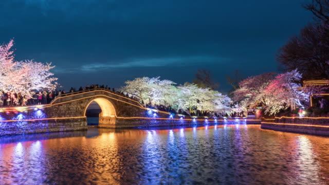 低速度撮影桜の花のオープンシーズンは緑