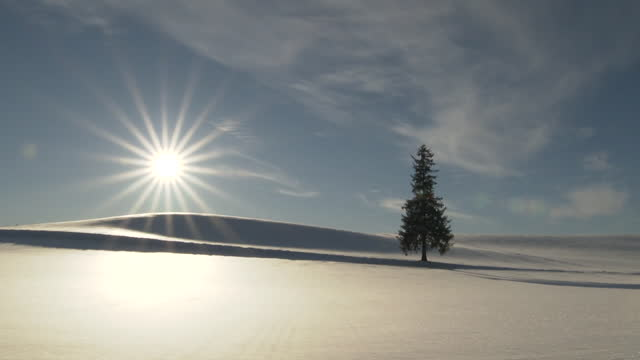 """time lapse: """"christmas tree"""" in biei town, hokkaido - biei town stock videos & royalty-free footage"""