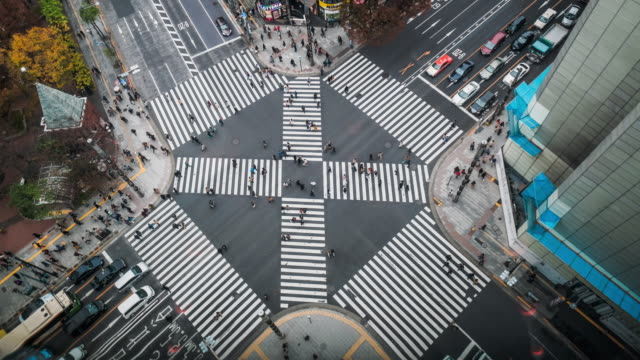 4k time lapse clip top view crowd and car, cross-walk ginza  traffic,japan-tokyo city - top video stock e b–roll