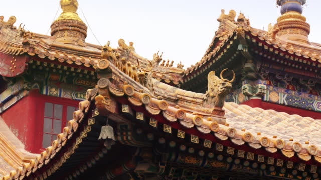 Time lapse close up detail of carvings on roof / zoom out wide shot people outside Falun Dian hall at Lama Temple / Beijing