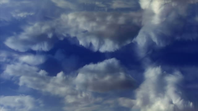 time lapse clouds evolve and puff in a blue sky. - miglioramento digitale video stock e b–roll