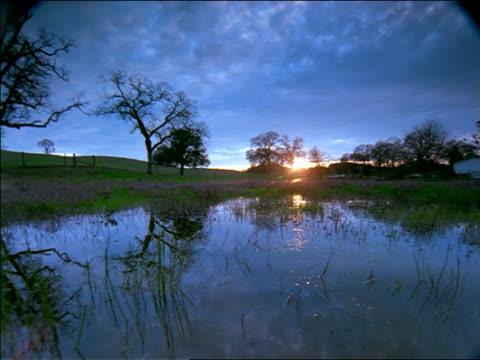 vídeos de stock, filmes e b-roll de time lapse clouds + sunrise/sunset over pond in countryside / sierra nevada foothills near san francisco - céu romântico