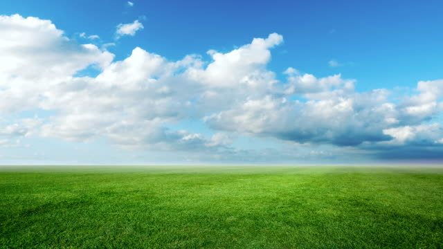 Time lapse clouds with fresh grass field