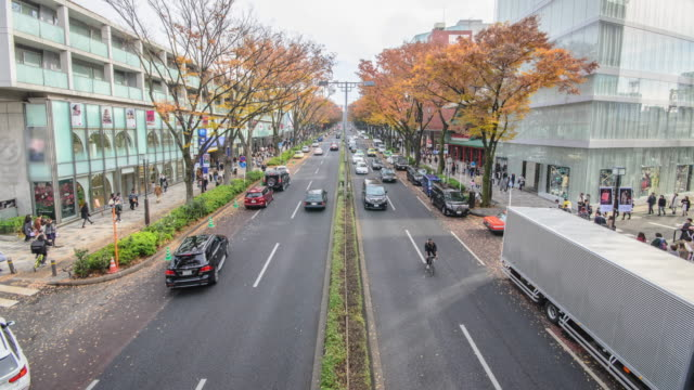 Time lapse :Crowds walk through a Omote Sando Road. Omote-sando is considered one of most important shopping areas in Tokyo, the largest city in the world.