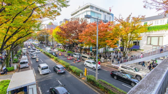 4K Time lapse :Crowds walk through a Omote Sando Road. Omote-sando is considered one of most important shopping areas in Tokyo, the largest city in the world