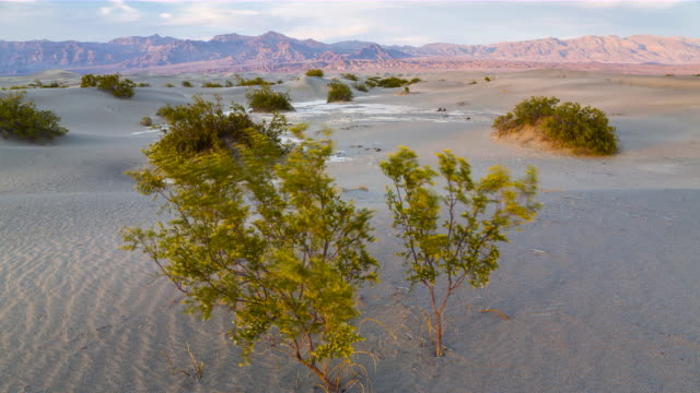 time lapse death valley national park, california, usa - ruhige szene stock-videos und b-roll-filmmaterial