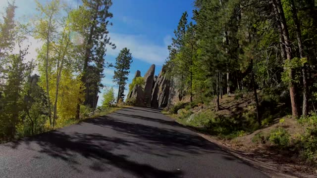 time lapse drive down needles highway, south dakota - custer staatspark stock-videos und b-roll-filmmaterial