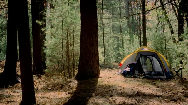 time lapse establishing shot of tent at campsite in woods - camping stock videos & royalty-free footage