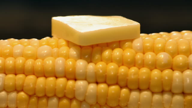 time lapse extreme close up of pat of butter melting on corn on the cob - corn cob stock videos & royalty-free footage