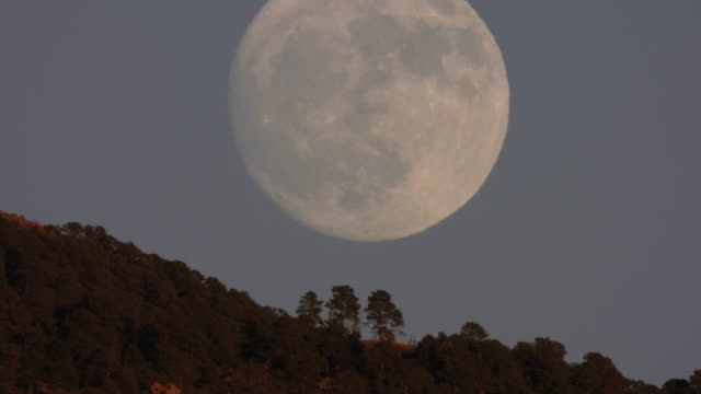 time lapse extreme full moon rising with mountain and forrest in forground - full moon stock videos & royalty-free footage