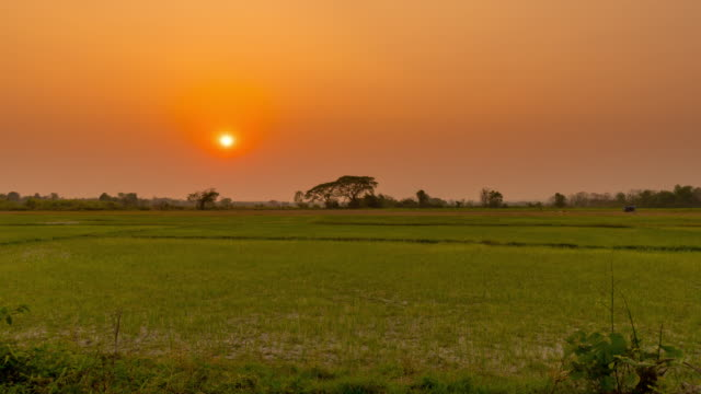 4k time lapse : field in morning and sunrise - sunrise dawn stock videos & royalty-free footage