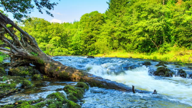 Time lapse footage of rapids at Penddol Rocks on River Wye at Builth Wells.
