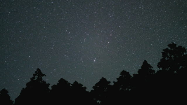 time lapse footage of the night sky sky full of stars circling around the north star - 北極星点の映像素材/bロール