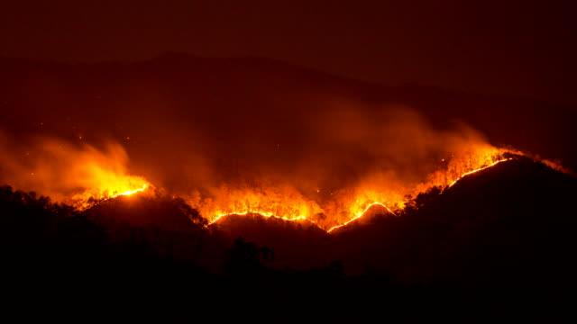 Zeitraffer Waldbrand Verbrennungen bei Nacht