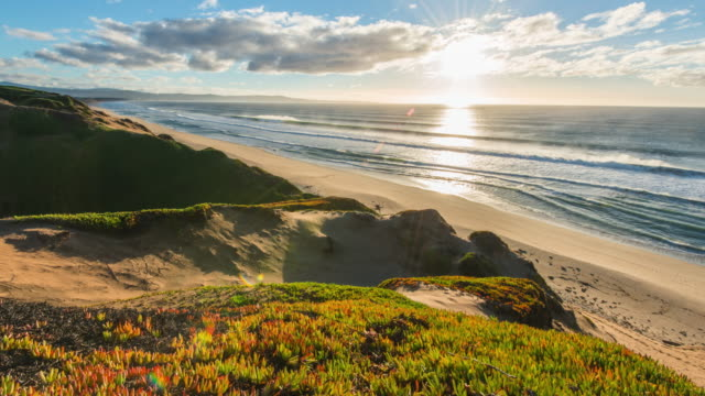 214 Grassy Sand Dunes Sea Videos and HD Footage - Getty Images